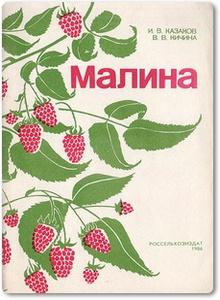 Малина - Казаков И. В.