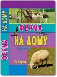 Ферма на дому - Харчук Ю.