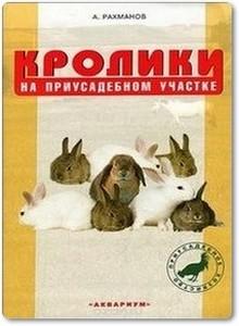 Кролики на приусадебном участке - Рахманов А.