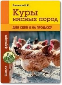 Куры мясных пород - Балашов И. Е.