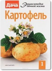 Картофель - Кабина М.