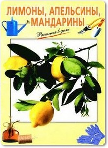 Лимоны, апельсины, мандарины - Тавлинова Г. К.