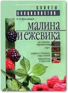 Малина и Ежевика - Ярославлавцев Е.