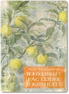 Плодовые растения в комнате - Овсянников И. В.