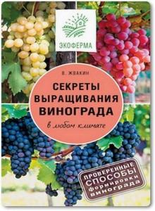Секреты выращивания винограда в любом климате - Жвакин В.