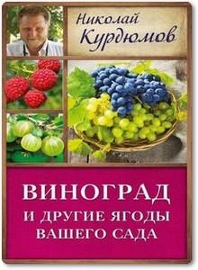Виноград и другие ягоды вашего сада - Курдюмов Н. И.