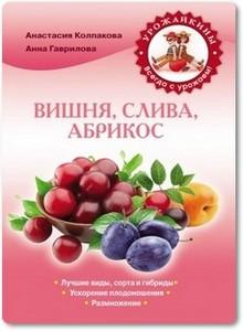 Вишня, слива, абрикос - Гаврилова А. С.