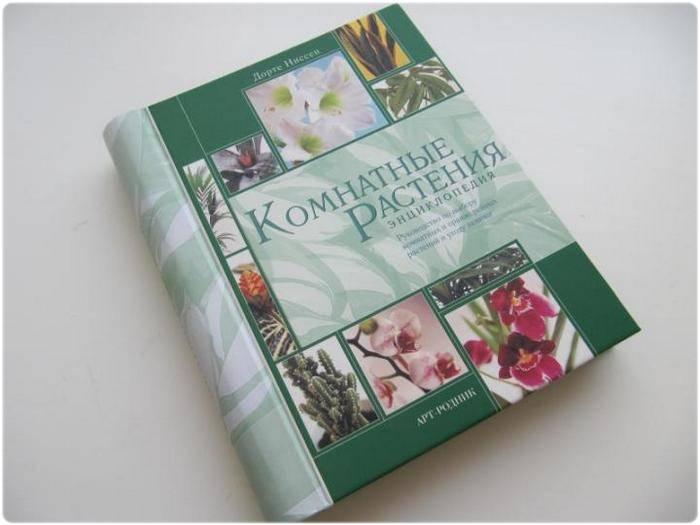 Книга: Комнатные растения - Ниссен Дорте