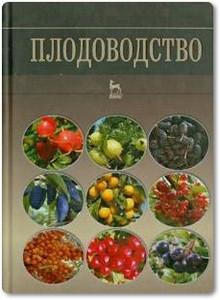 Плодоводство - Кривко Н. П.