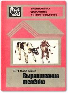Выращивание телёнка - Лазаренко В. Н.
