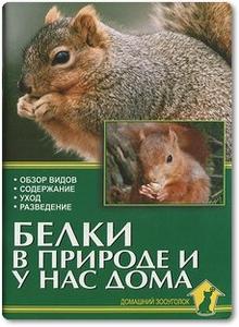 Белки в природе и у нас дома - Рахманов А. И.
