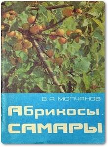 Абрикосы Самары - Молчанов В. А.