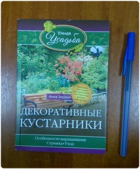 Книга: Декоративные кустарники - Зорина А.