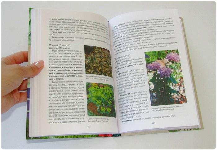Книга: Многолетники в вашем саду - Костина-Кассанелли Н.