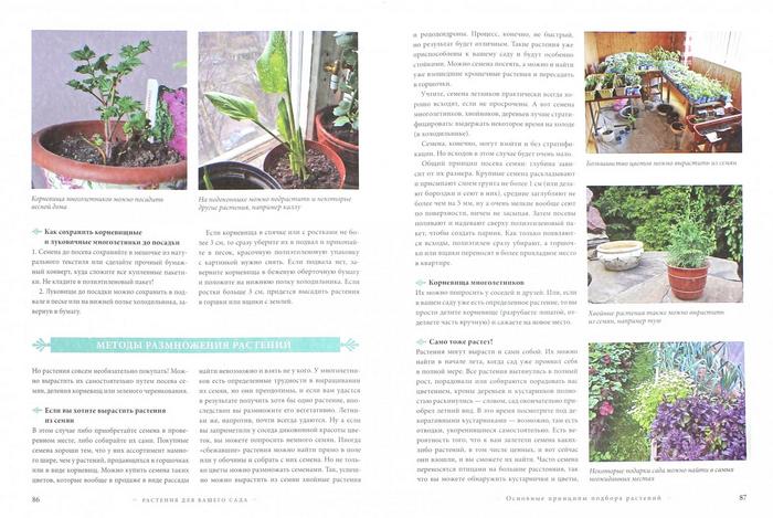Книга: Сам себе садовник - Воронова О. В.