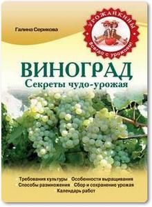 Виноград: Секреты чудо-урожая - Серикова Г.