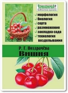 Вишня - Ноздрачева Р. Г.