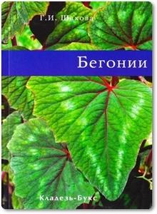 Бегонии - Шахова Г. И.