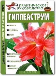 Гиппеаструм - Кулиш С. В.