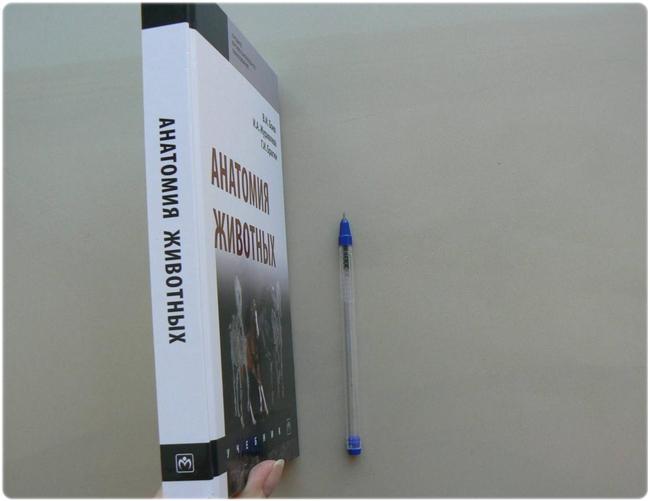 Книга: Анатомия животных - Боев В. И. и др.