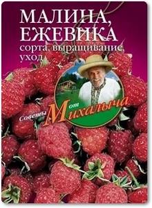 Малина, ежевика: Сорта, выращивание, уход - Звонарев Н. М.