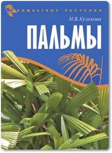 Пальмы - Куликова М. В.