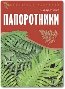 Папоротники - Куликова М. В.