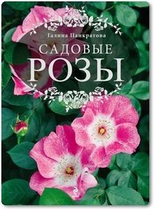 Садовые розы - Панкратова Г. М.