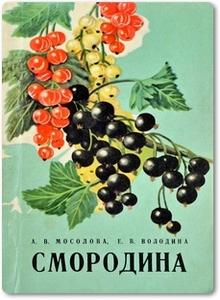 Смородина - Мосолова А. В.