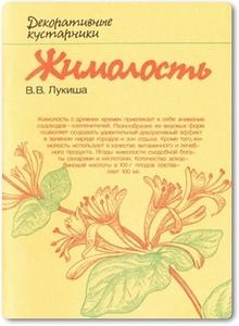 Жимолость - Лукиша В. В.
