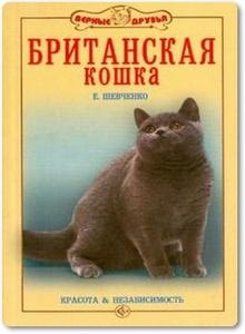 Британская кошка - Шевченко Е. А.