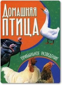 Домашняя птица - Жмакин М. С.