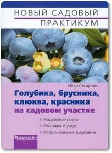 Голубика, брусника, клюква на садовом участке - Смирнов И.