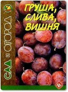 Груша, слива, вишня - Путырский И. Н.