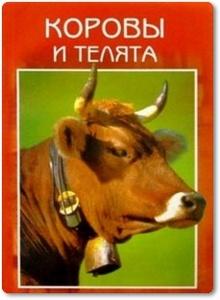 Коровы и телята