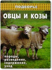 Овцы и козы: породы, разведение, содержание, уход - Коваленко П. И.