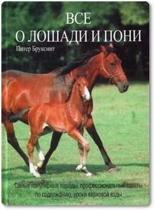 Все о лошади и пони - Бруксмит П.