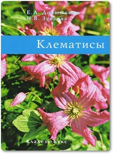 Клематисы - Донюшкина Е. А.