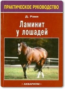 Ламинит у лошадей - Рэми Д.
