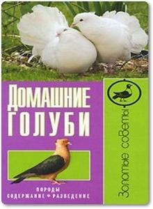 Домашние голуби - Каминская Е. А.