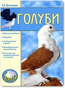 Голуби - Костельнюк Г. А.