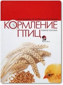 Кормление птиц - Шарейко Н. А.