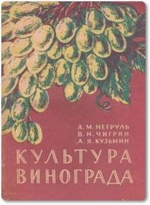 Культура винограда - Негруль А. М. и др.