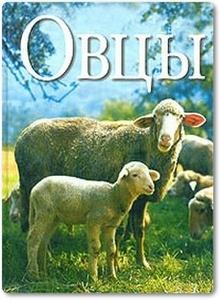 Овцы - Ридер Х.