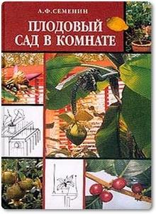 Плодовый сад в комнате - Семенин А. Ф.