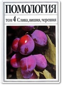Помология Том 4: Слива, вишня, черешня - Андриенко М. В.