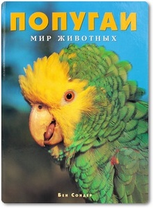 Попугаи - Сондер Б.