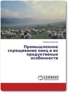 Промышленное скрещивание овец и их продуктивные особенности