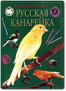 Русская канарейка - Остапенко В. А. и др.