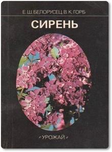 Сирень - Белорусец Е. Ш. и др.